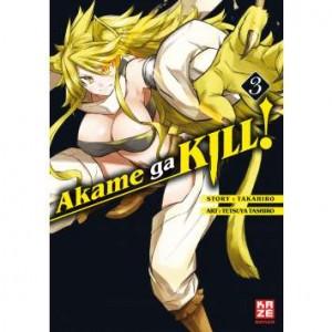Akame ga Kill 03