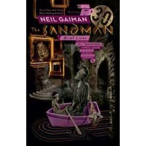 Sandman TP Vol 07 (Englisch)
